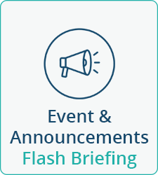 Text flash briefing